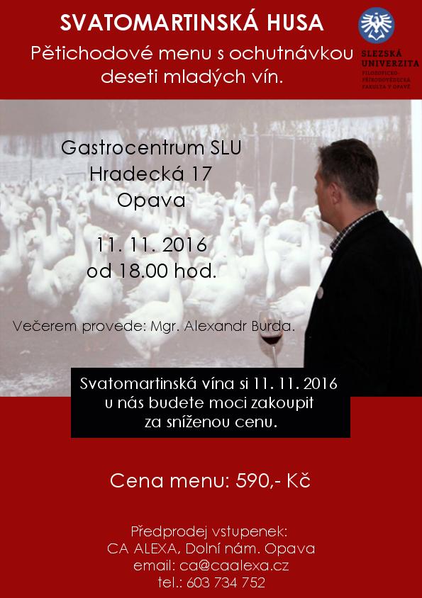 svatomartinska_husa
