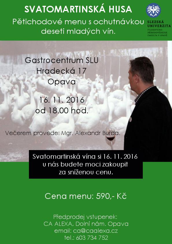 svatomartinska_husa2a